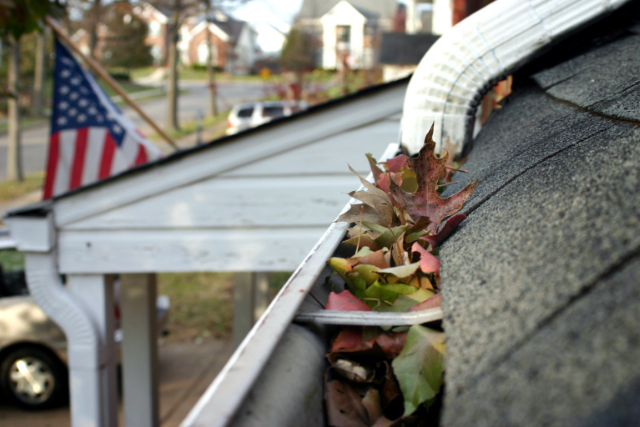 Eugene Gutter Cleanup on a residential roof side